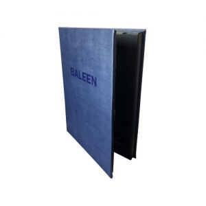 baleen-418481